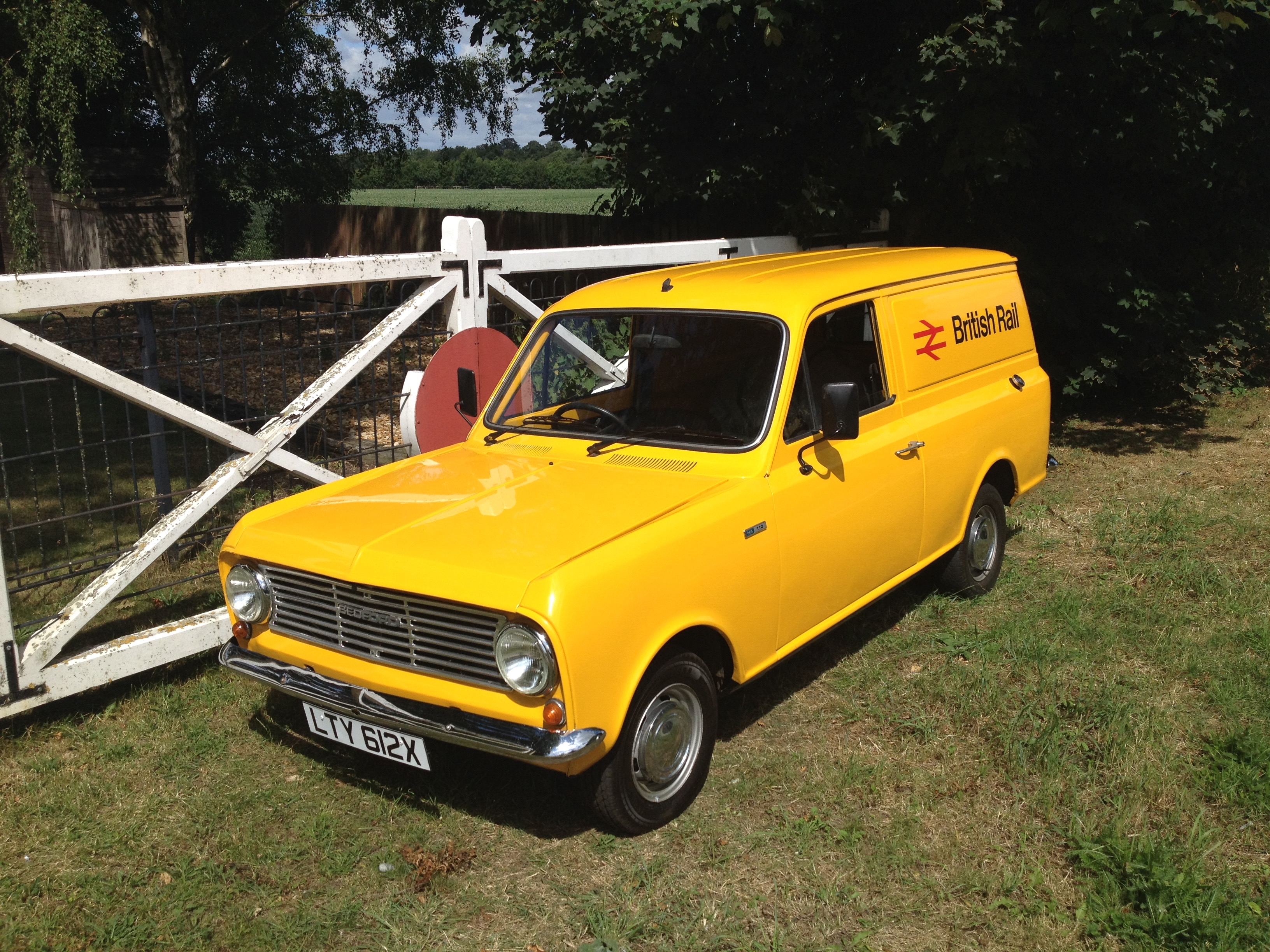 Yellow bedford