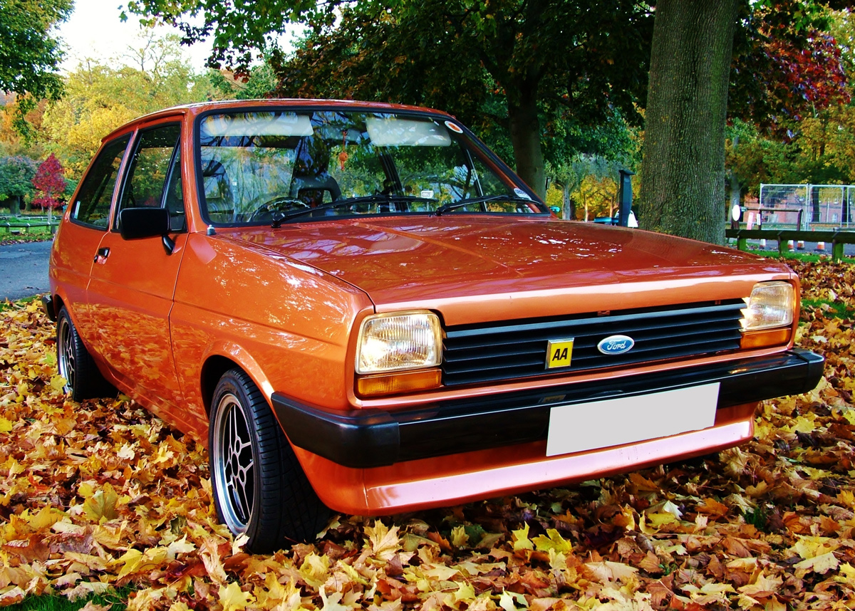 A brown Ford Fiesta parked on a pile of fallen brown leaves